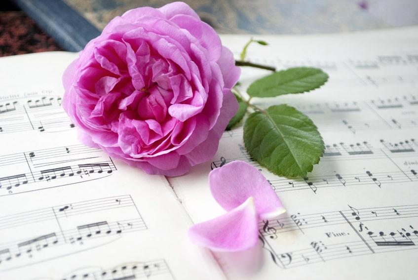 Quelles sont les relations entre la musique et les rites funéraires ?