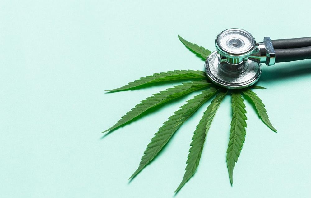 Pourquoi l'usage du cannabis sera-t-il peut-etre autorisé en soins de fin de vie ?